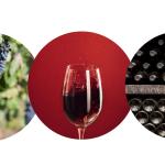 Откъде идват ароматите на виното