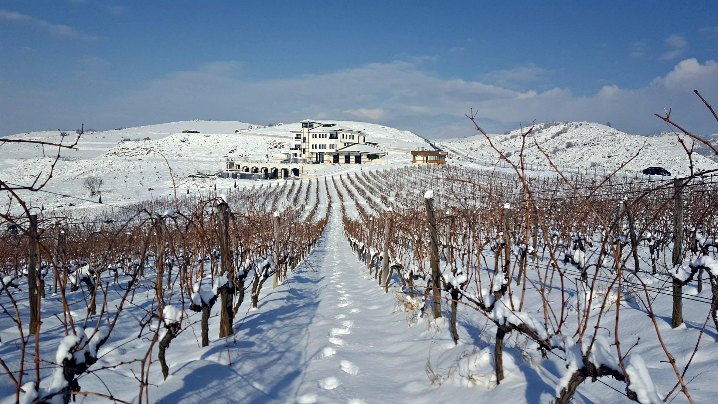 Villa Melnik -winter