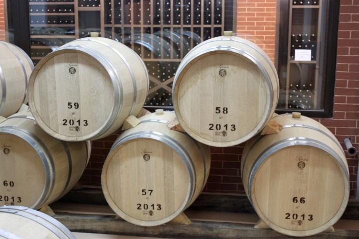 medi-valley-winetours (11)