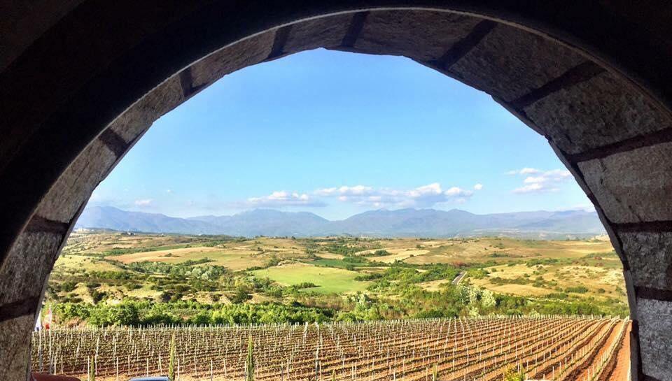 rupel-winery-winetours-2