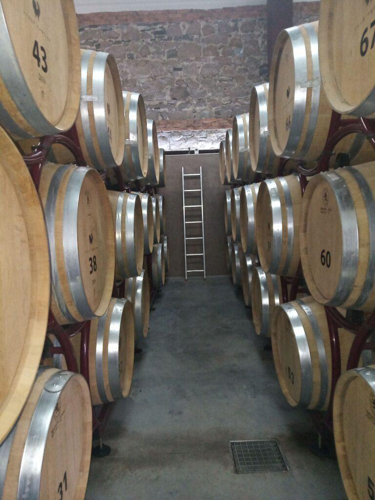 домашни или вина от винарска изба
