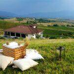 13 винарни с дегустации на открито в България