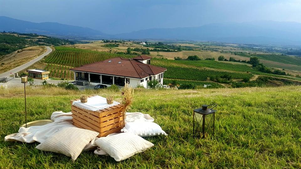 винарни с дегустации на открито