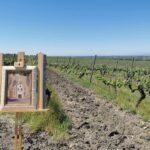 Вино и изкуство във винарска изба Загрей